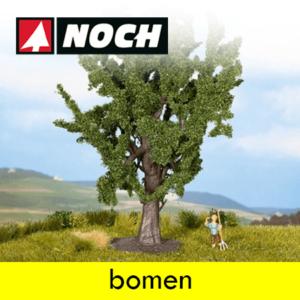 Noch Bomen