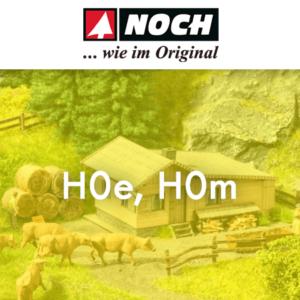 Spoor:H0E,H0M